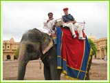 Elephant Ride, Jaipur